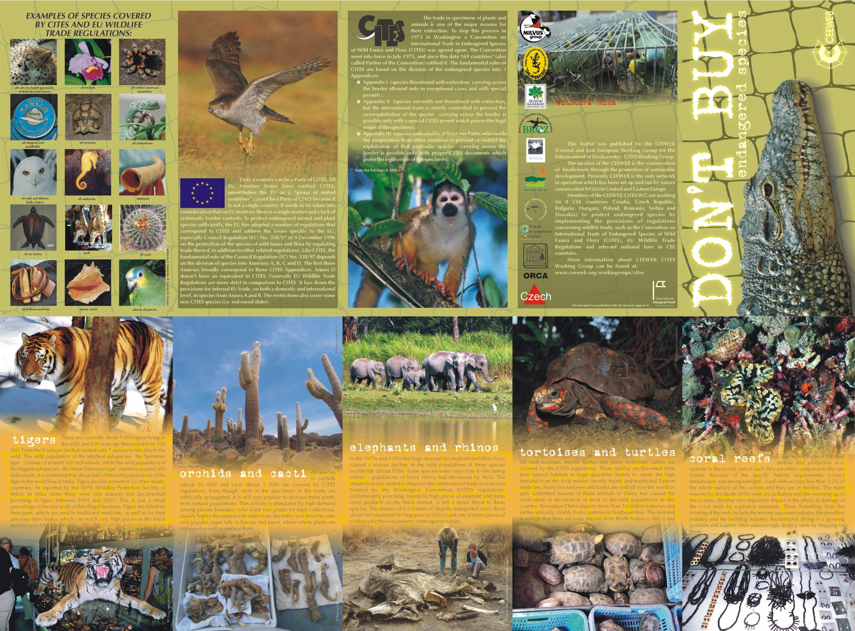 endangered animals essay conclusion These animals are endangered, and because of this the support for endangered animals is very crucial.