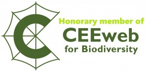 ceeweb_logo honorary