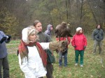 Traditional Hungarian Falconry