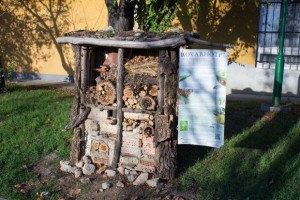 Insect Hotel in the arboretum of Corvinus University, Budapest (Photo: Erzsébet Óhegyi)