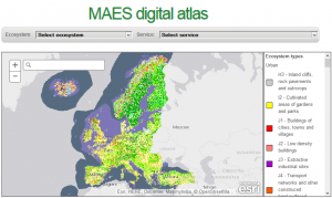 maes digital atlas