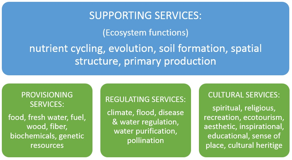 provisioning regulating cultural ecosystem services
