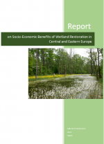 Ecosystem Services Report