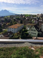 Iwona Machlińska: Green Roofs in Weggis, Switzerland