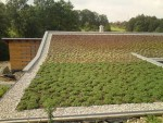 European Federation of Green Roof Associations - EFB: green roof 3