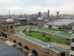 Livingroofs.org Ltd: intensive green roof